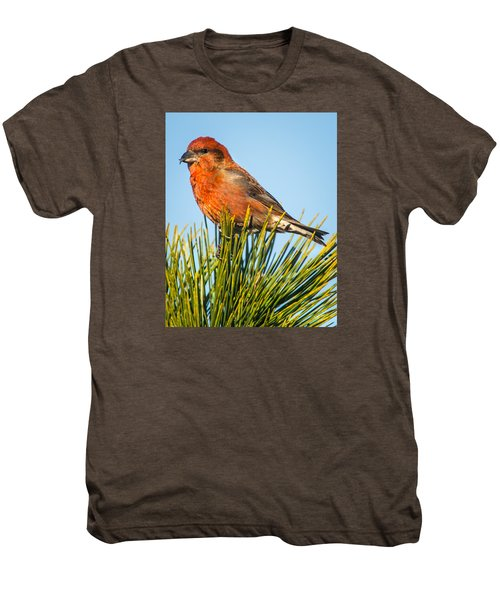 Tree Top Men's Premium T-Shirt by John Crookes