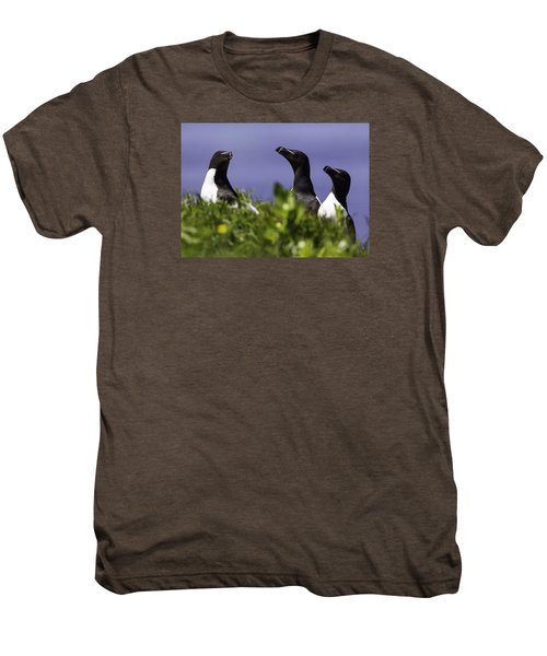 Trio Men's Premium T-Shirt by Marie Elise Mathieu