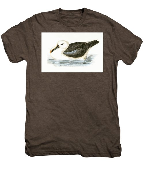 Yellow Nosed Albatross Men's Premium T-Shirt by English School