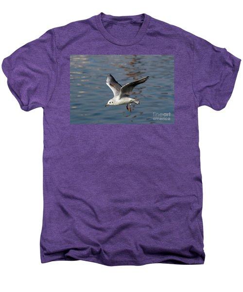 Flying Gull Men's Premium T-Shirt by Michal Boubin