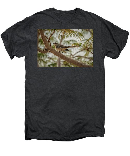 Mockingbird Men's Premium T-Shirt by Robert Bales