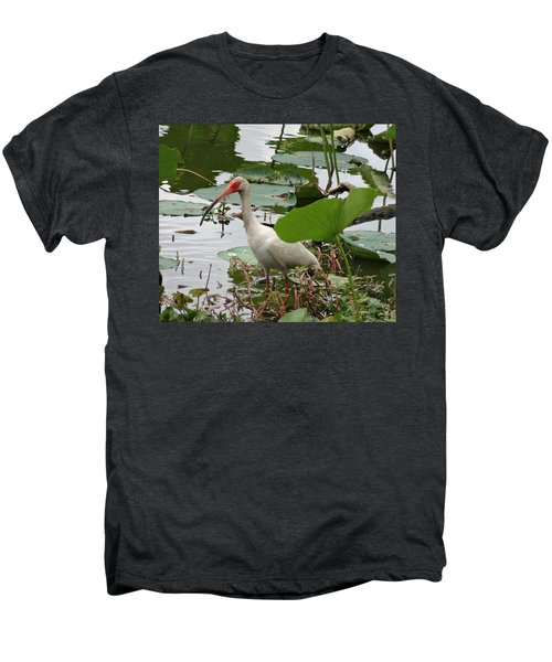 American White Ibis In Brazos Bend Men's Premium T-Shirt by Dan Sproul