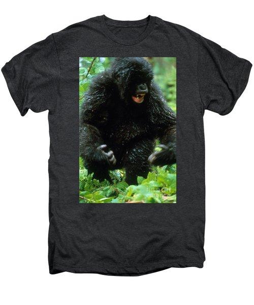 Angry Mountain Gorilla Men's Premium T-Shirt by Art Wolfe