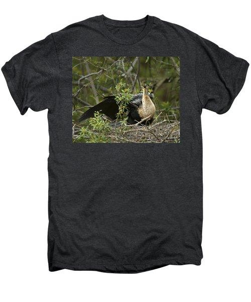 Anhinga Mama Men's Premium T-Shirt by Phill Doherty