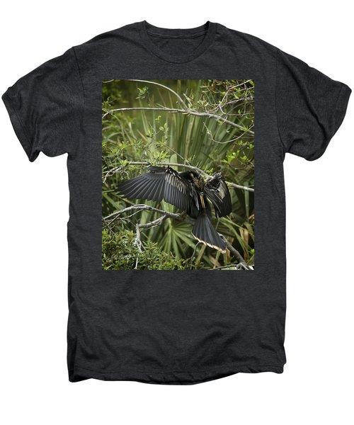 Anhinga Papa Men's Premium T-Shirt by Phill Doherty