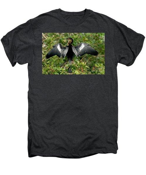 Anhinga Sunning Men's Premium T-Shirt by Anthony Mercieca