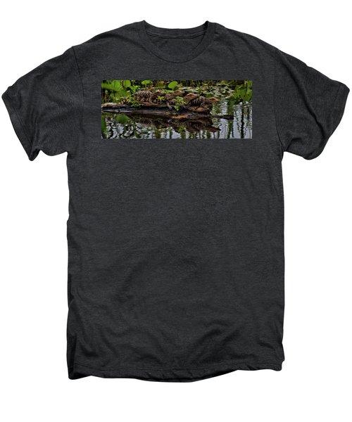 Baby Alligators Reflection Men's Premium T-Shirt by Dan Sproul