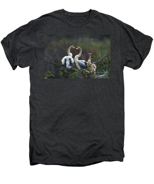 Baby Anhinga Men's Premium T-Shirt by Mark Newman