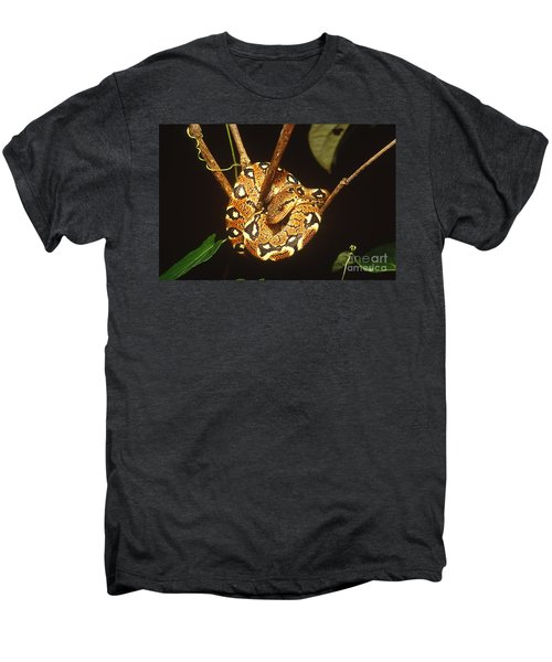 Boa Constrictor Men's Premium T-Shirt by Art Wolfe
