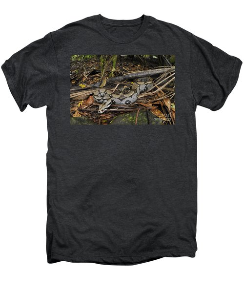 Boa Constrictor Men's Premium T-Shirt by Francesco Tomasinelli
