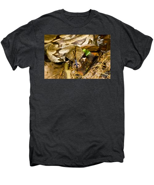 Boa Constrictor Men's Premium T-Shirt by Gregory G. Dimijian, M.D.