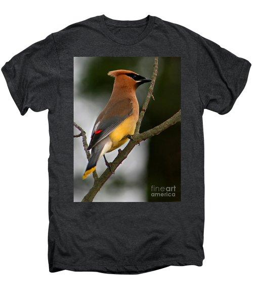 Cedar Wax Wing II Men's Premium T-Shirt by Roger Becker