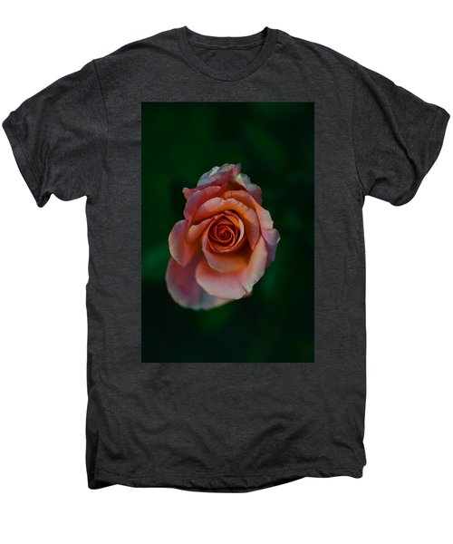 Close-up Of A Pink Rose, Beverly Hills Men's Premium T-Shirt by Panoramic Images