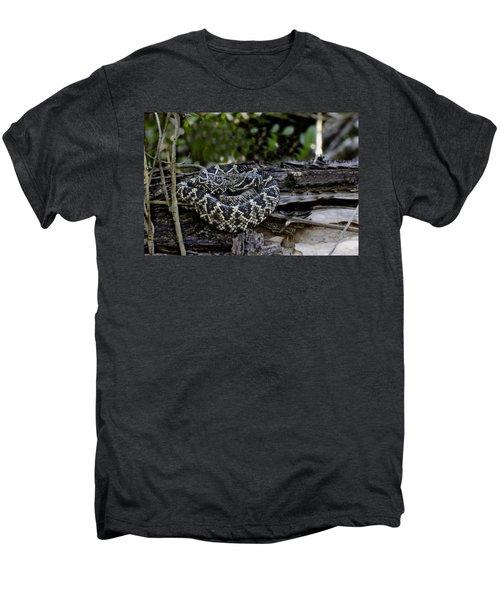 Eastern Diamondback-2 Men's Premium T-Shirt by Rudy Umans