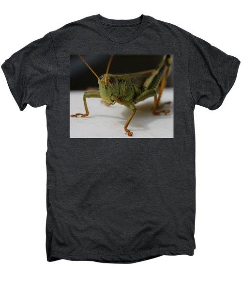 Grasshopper Men's Premium T-Shirt by Dan Sproul