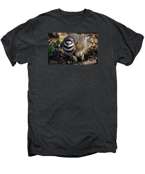 Killdeer Mom Men's Premium T-Shirt by Skip Willits