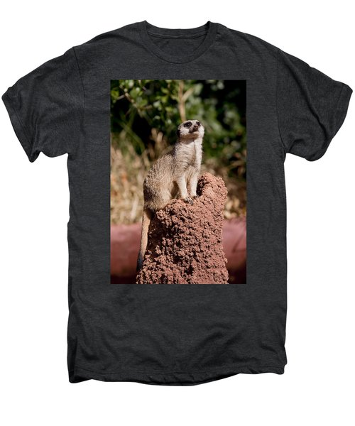 Lookout Post Men's Premium T-Shirt by Michelle Wrighton