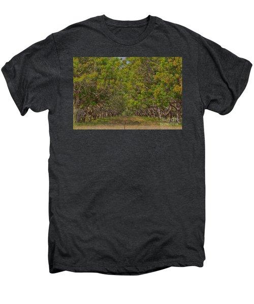 Mango Orchard Men's Premium T-Shirt by Douglas Barnard