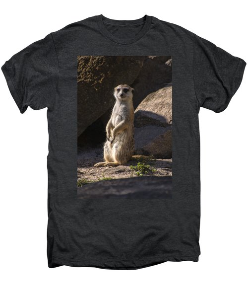 Meerkat Looking Forward Men's Premium T-Shirt by Chris Flees