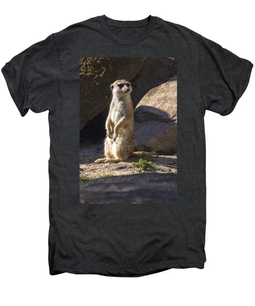 Meerkat Looking Left Men's Premium T-Shirt by Chris Flees