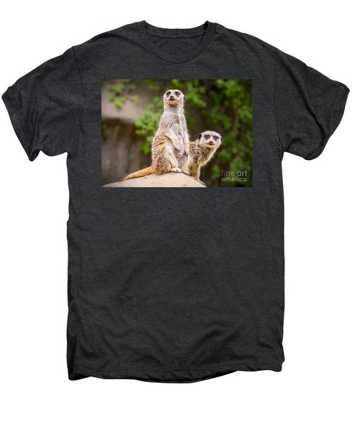 Meerkat Pair Men's Premium T-Shirt by Jamie Pham