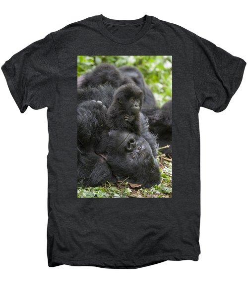 Mountain Gorilla Baby Playing Men's Premium T-Shirt by Suzi  Eszterhas