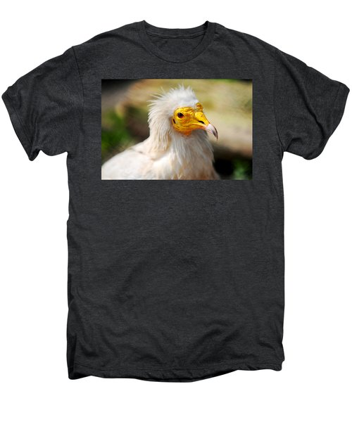 Pharaoh Chicken. Egyptian Vulture Men's Premium T-Shirt by Jenny Rainbow