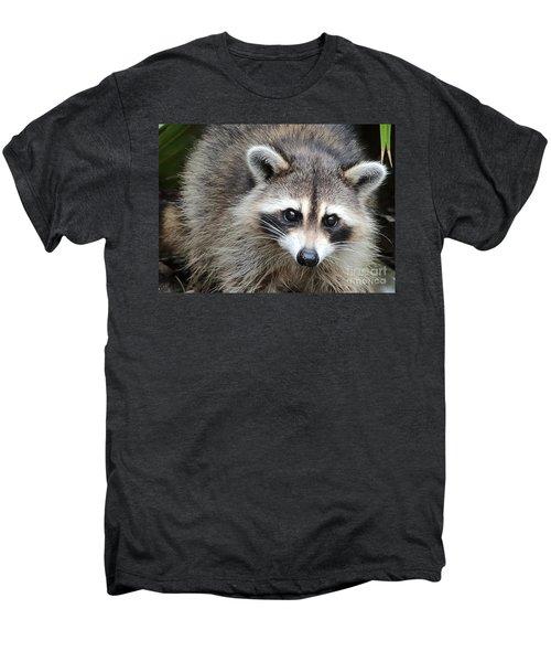 Raccoon Eyes Men's Premium T-Shirt by Carol Groenen