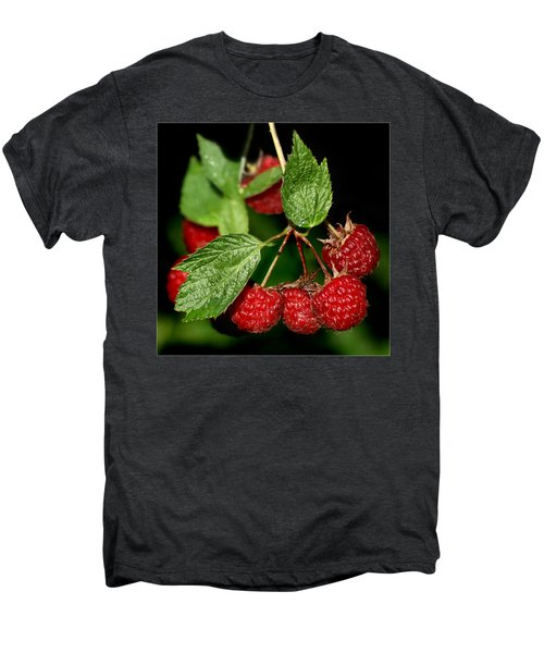 Raspberries Men's Premium T-Shirt by Nikolyn McDonald
