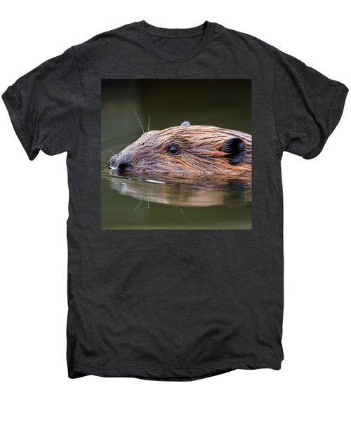 The Beaver Square Men's Premium T-Shirt by Bill Wakeley