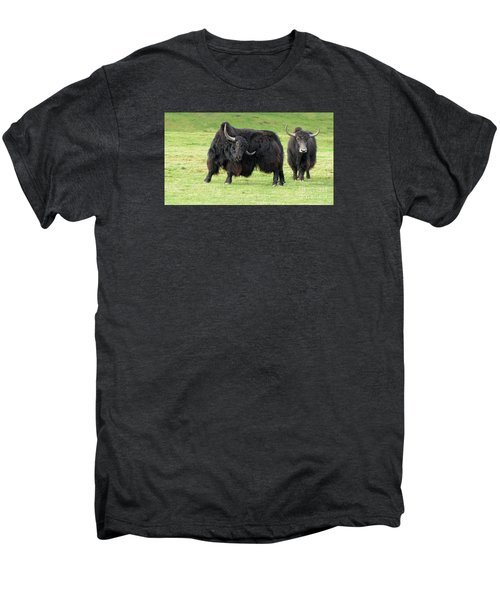 Yaketty Yak Men's Premium T-Shirt by Liz Leyden