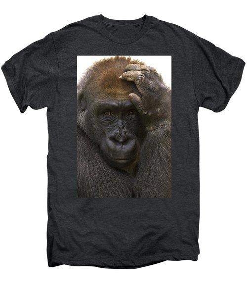 Western Lowland Gorilla With Hand Men's Premium T-Shirt by San Diego Zoo