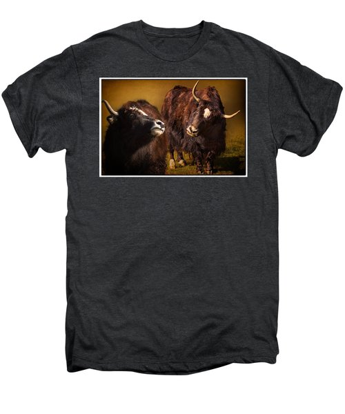 Yak Love Men's Premium T-Shirt by Priscilla Burgers