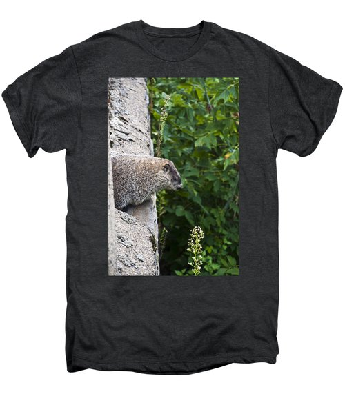 Groundhog Day Men's Premium T-Shirt by Bill Cannon