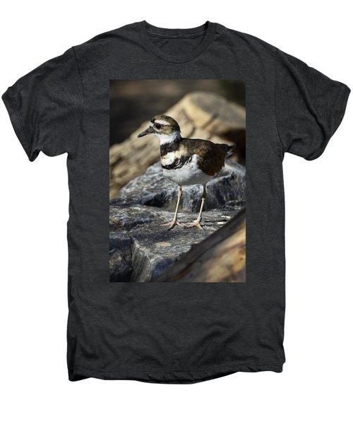Killdeer Men's Premium T-Shirt by Saija  Lehtonen