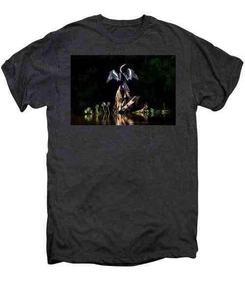 Anhinga Anhinga Anhinga, Pantanal Men's Premium T-Shirt by Panoramic Images