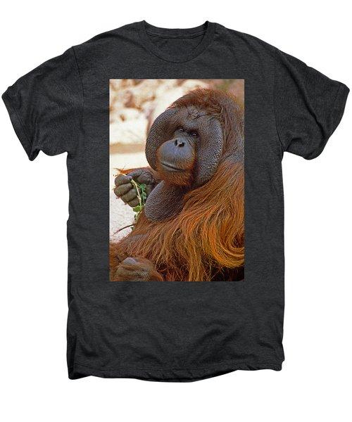 Big Daddy Men's Premium T-Shirt by Michele Burgess