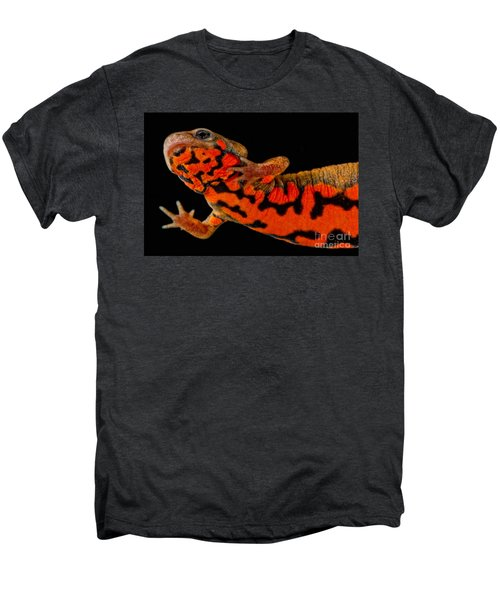 Chuxiong Fire Belly Newt Men's Premium T-Shirt by Dant� Fenolio