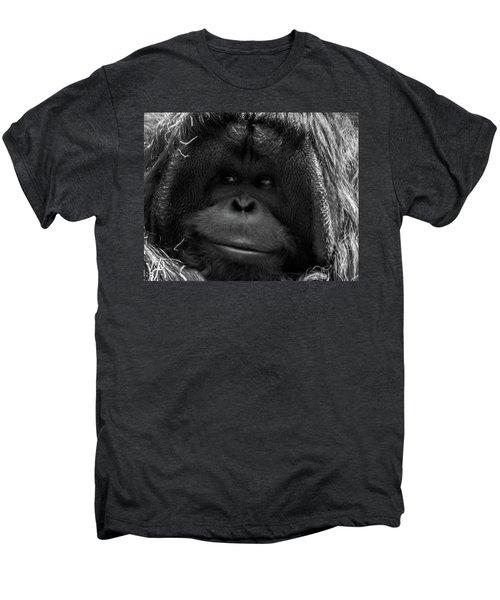 Orangutan Men's Premium T-Shirt by Martin Newman