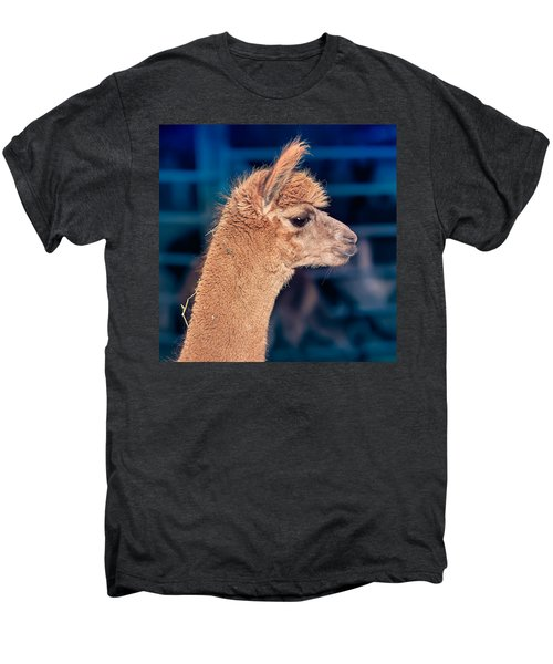 Alpaca Wants To Meet You Men's Premium T-Shirt by TC Morgan