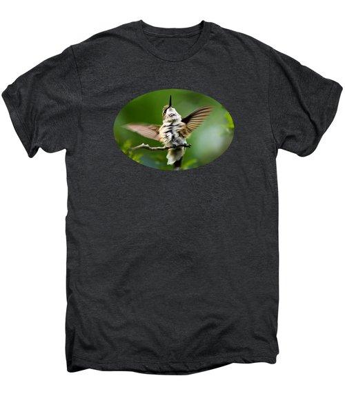 Hummingbird Happy Dance Men's Premium T-Shirt by Christina Rollo