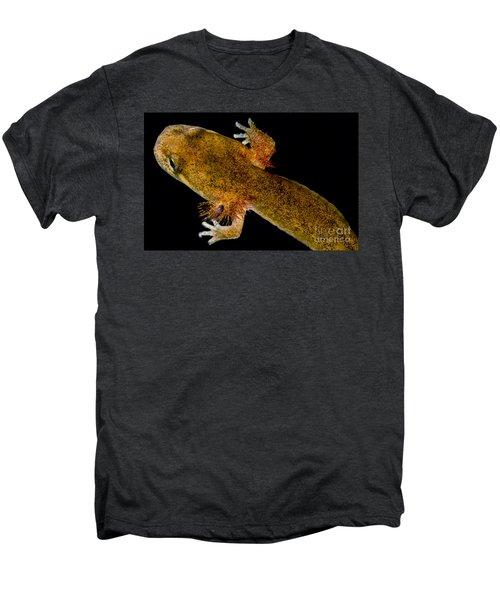 California Giant Salamander Larva Men's Premium T-Shirt by Dant� Fenolio