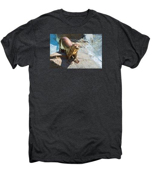 Catching Some Sun Men's Premium T-Shirt by Jamie Pham