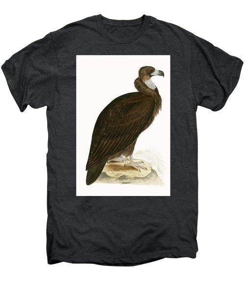 Cinereous Vulture Men's Premium T-Shirt by English School
