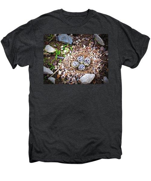 Killdeer Nest Men's Premium T-Shirt by Cricket Hackmann