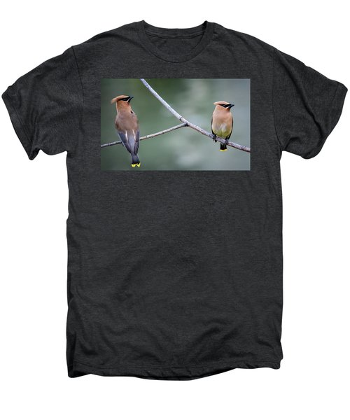 Looking To The Right Men's Premium T-Shirt by Omer Vautour