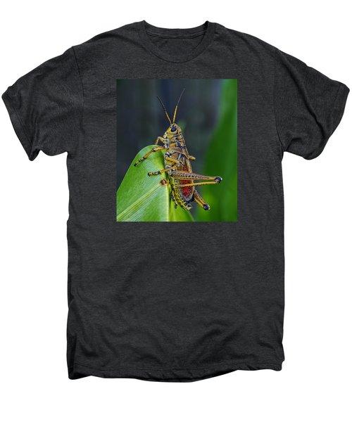 Lubber Grasshopper Men's Premium T-Shirt by Richard Rizzo