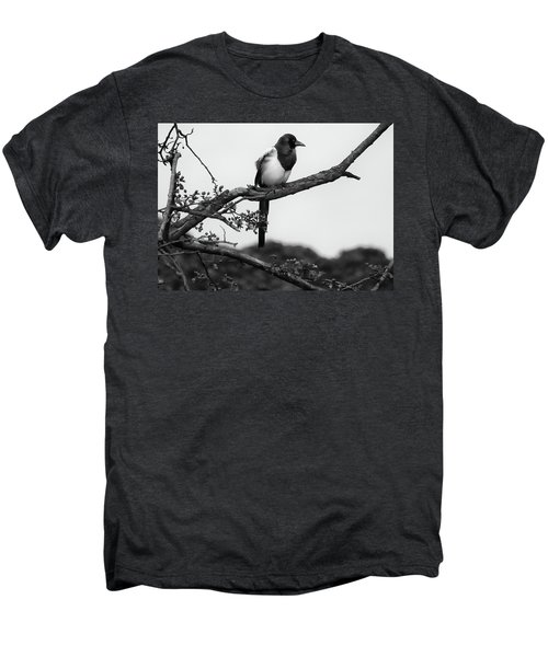 Magpie  Men's Premium T-Shirt by Philip Openshaw