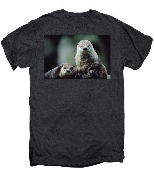 North American River Otter Lontra Men's Premium T-Shirt by Gerry Ellis