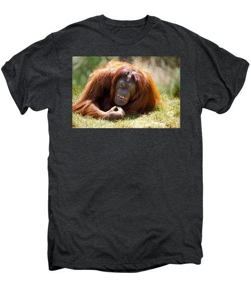 Orangutan In The Grass Men's Premium T-Shirt by Garry Gay
